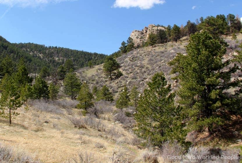 arthurs rock trail lory state park header