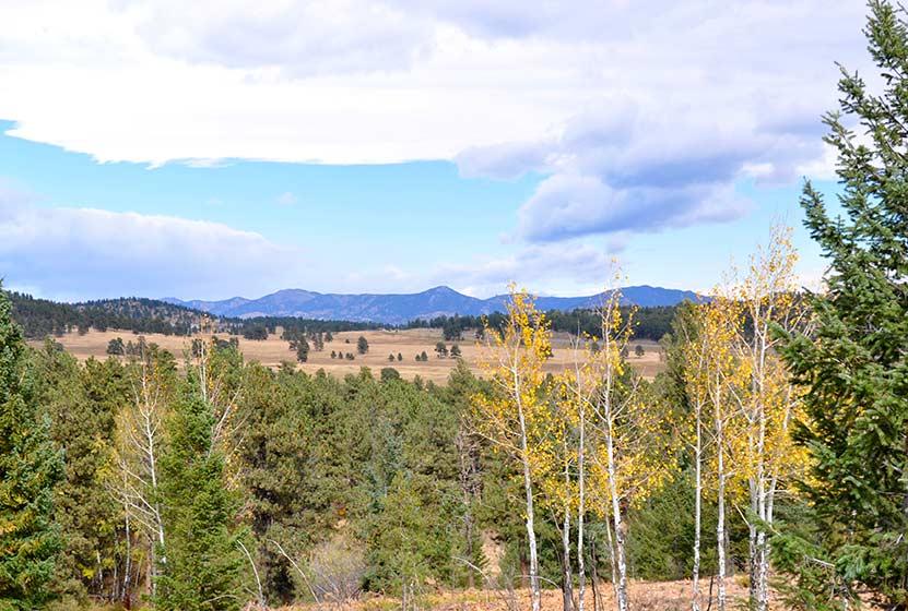 elk meadow park south loop header