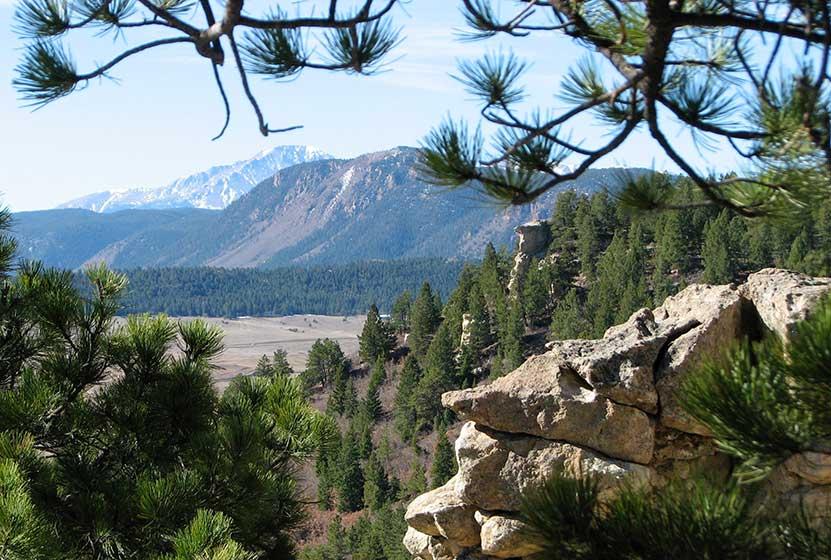 spruce mountain hikes near larkspur header