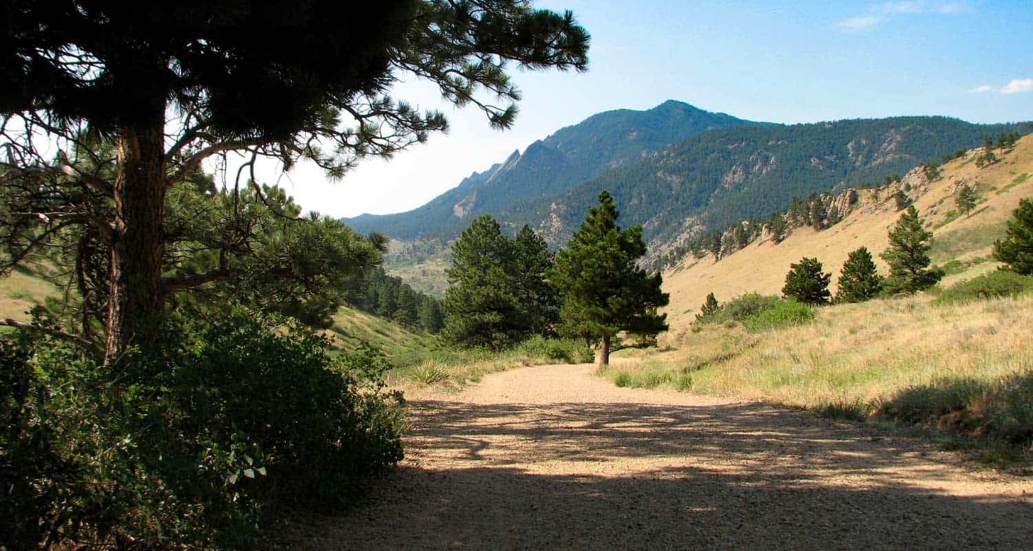 view of wide dirt trail at mount sanitas in boulder looking south to green mountain in boulder colorado ponderosa pine in foreground