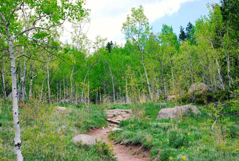 horseshoe trail golden gate canyon state park