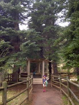 pine-valley-ranch-park-gazebo-island