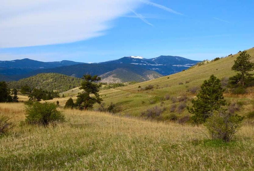 Elk Range Trail at Centennial Cone Park