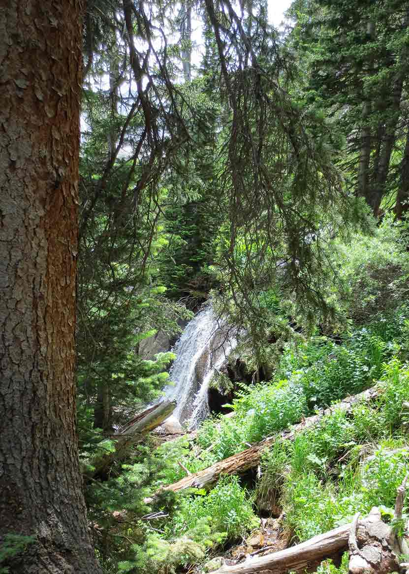 01_shelf-creek-falls-rocky-mountain-national-park