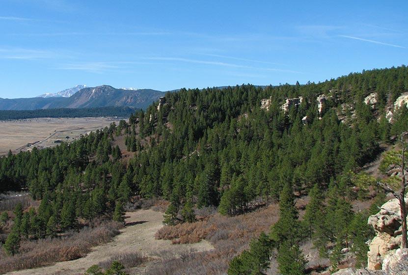 spruce-mountain-spring-hikes-denver