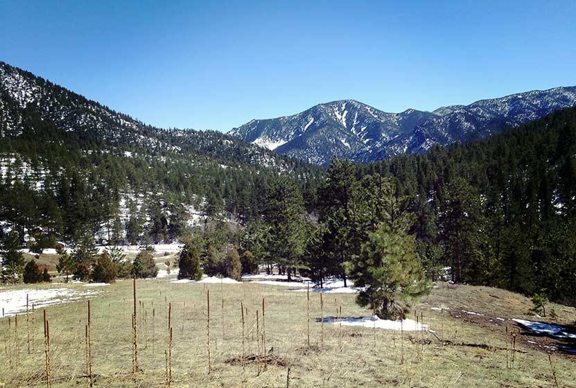eldorado-falls-walker-ranch-beginning-of-hike