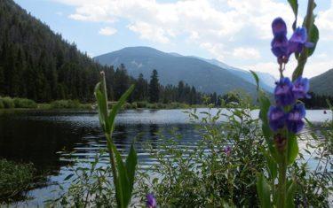 Monarch Lake Loop Hike
