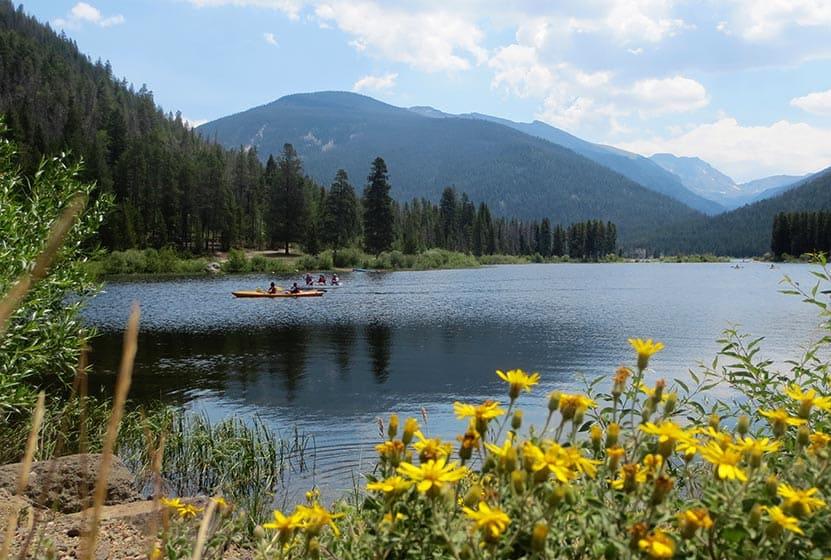 monarch-lake-colorado-loop-hike-yellow-flowers