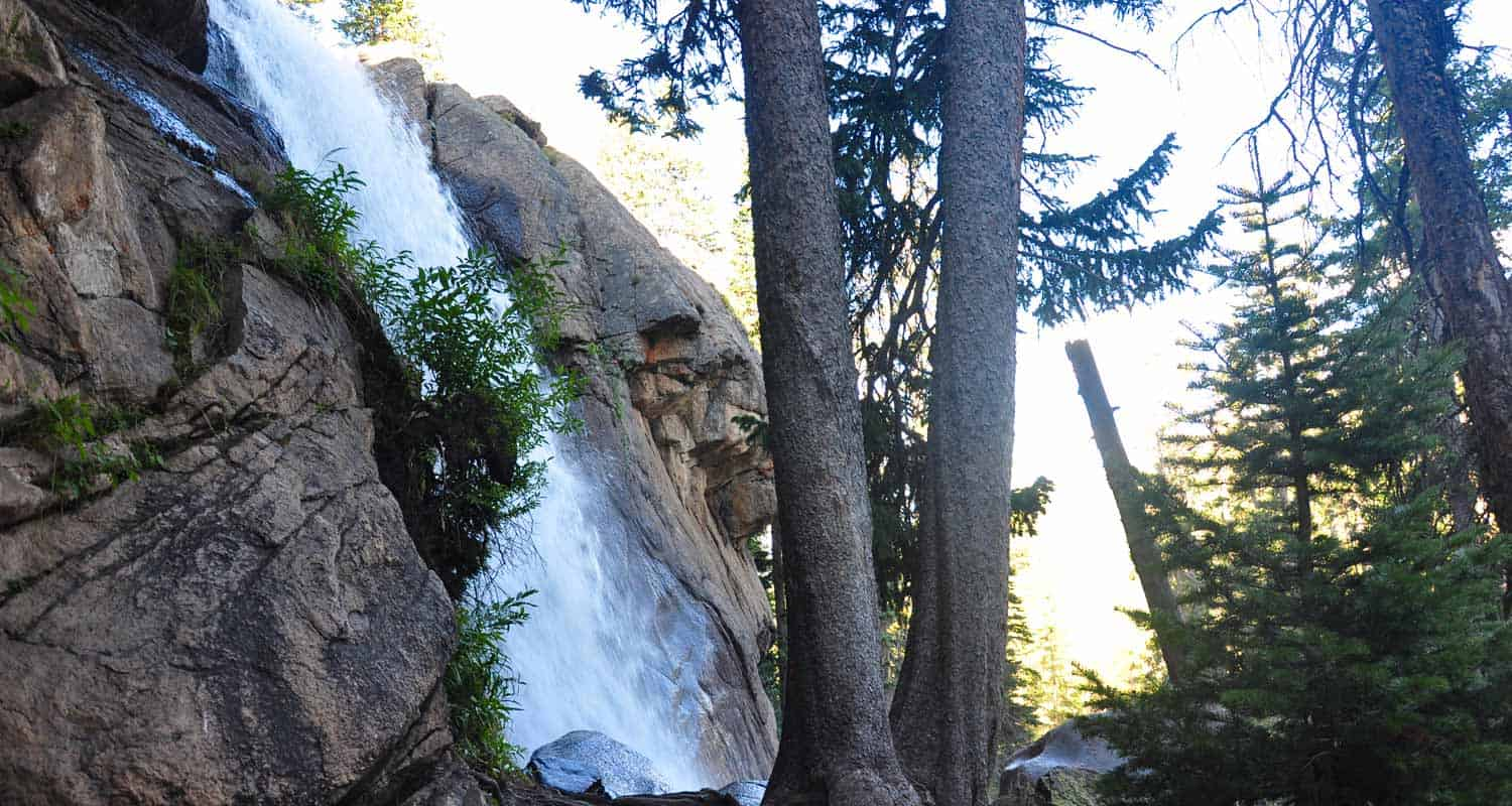 ouzel falls in rmnp spilling over cliff face near giant spruce trees on waterfall hike in rocky mountain national park