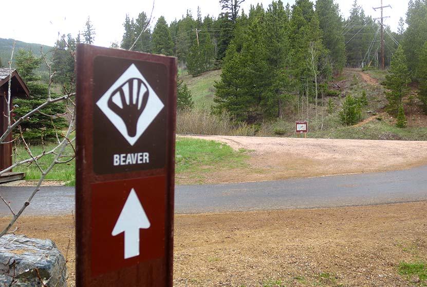 beaver loop golden gate canyon trail start