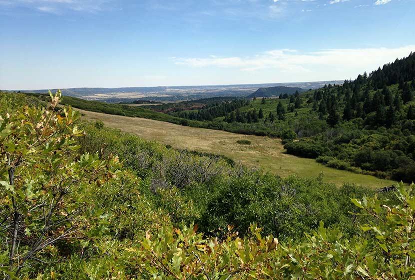 04-elk-valley-trail-roxborough-state-park