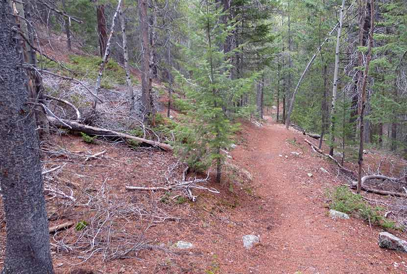 beaver loop golden gate canyon downhill segment