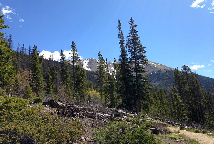 herman gulch hike trail