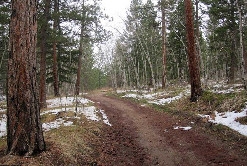 meyers homestead trail walker ranch winter