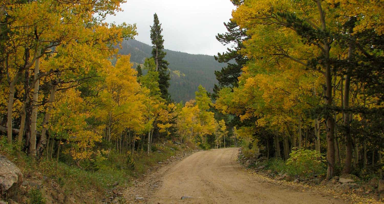 dirt road with changing aspen trees and mountain in background top 10 fall hikes near denver top 10 fall hikes near denver