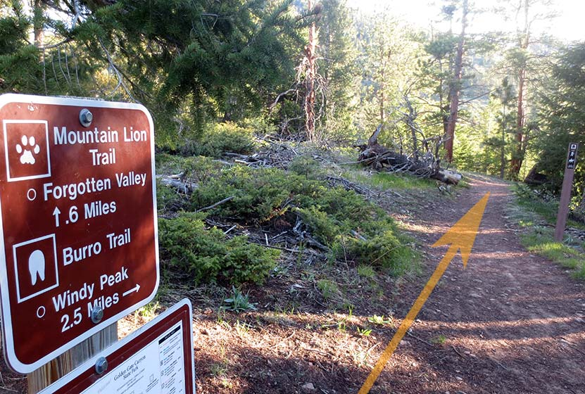 trail junction on burro trail in golden gate canyon