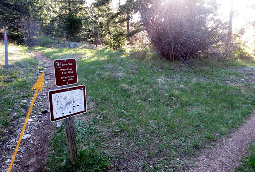 trail junction on burro trail with orange arrow