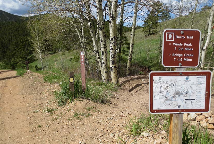 Trail junction with aspen trees in Golden Gate Canyon State Park