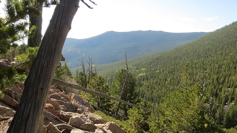 view to southeast with green mountains along st. vrain mountain trail in colorado