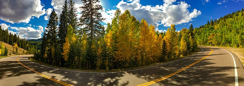 squaw pass road colorado bend in road at switchback with golden aspens and green spruce trees