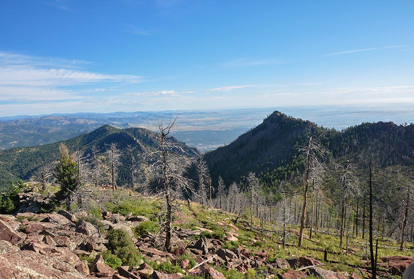 Rocky Trail between South Boulder Peak and Bear Peak