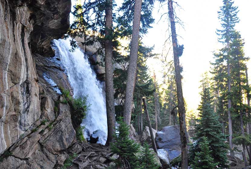 ouzel falls in rmnp waterfall gushing over brown rock with evergreen trees in foreground