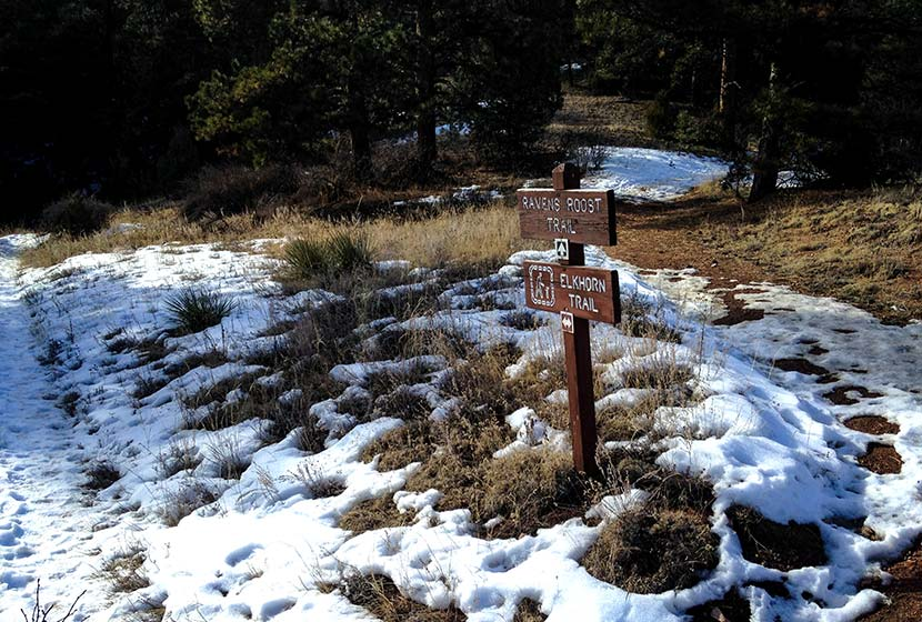 eagles view trail signs at reynolds park near conifer winter hike