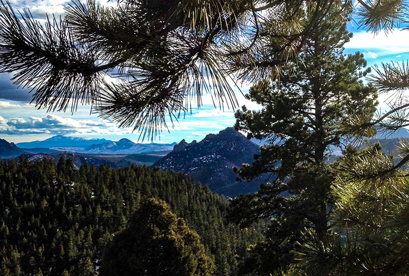 eagle view outlook in reynolds park near conifer colorado with views toward cathedral spires and pikes peak in the south with pine trees in the foreground
