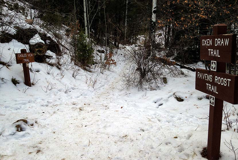 snowy trail junction of oxen draw and ravens roost trail with signage alongside trail at reynolds park near conifer colorado