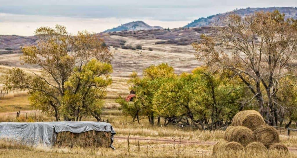 hay bales and cottonwood trails near palmer lake along santa fe trail hike
