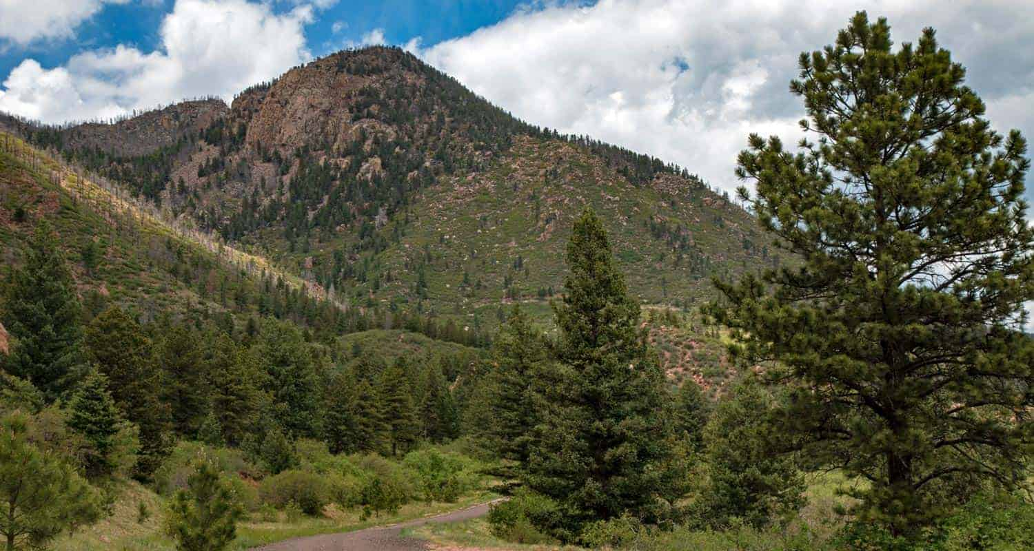 blodgett peak in distance on hike near colorado springs with pine trees in foreground