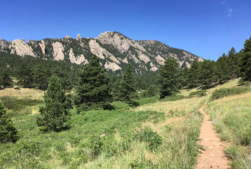 south mesa trail winding through meadow and pines at the base of bear peak