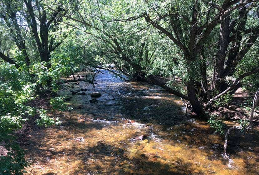 south boulder creek at south mesa trailhead flowing under bridge and tunnel of willow trees