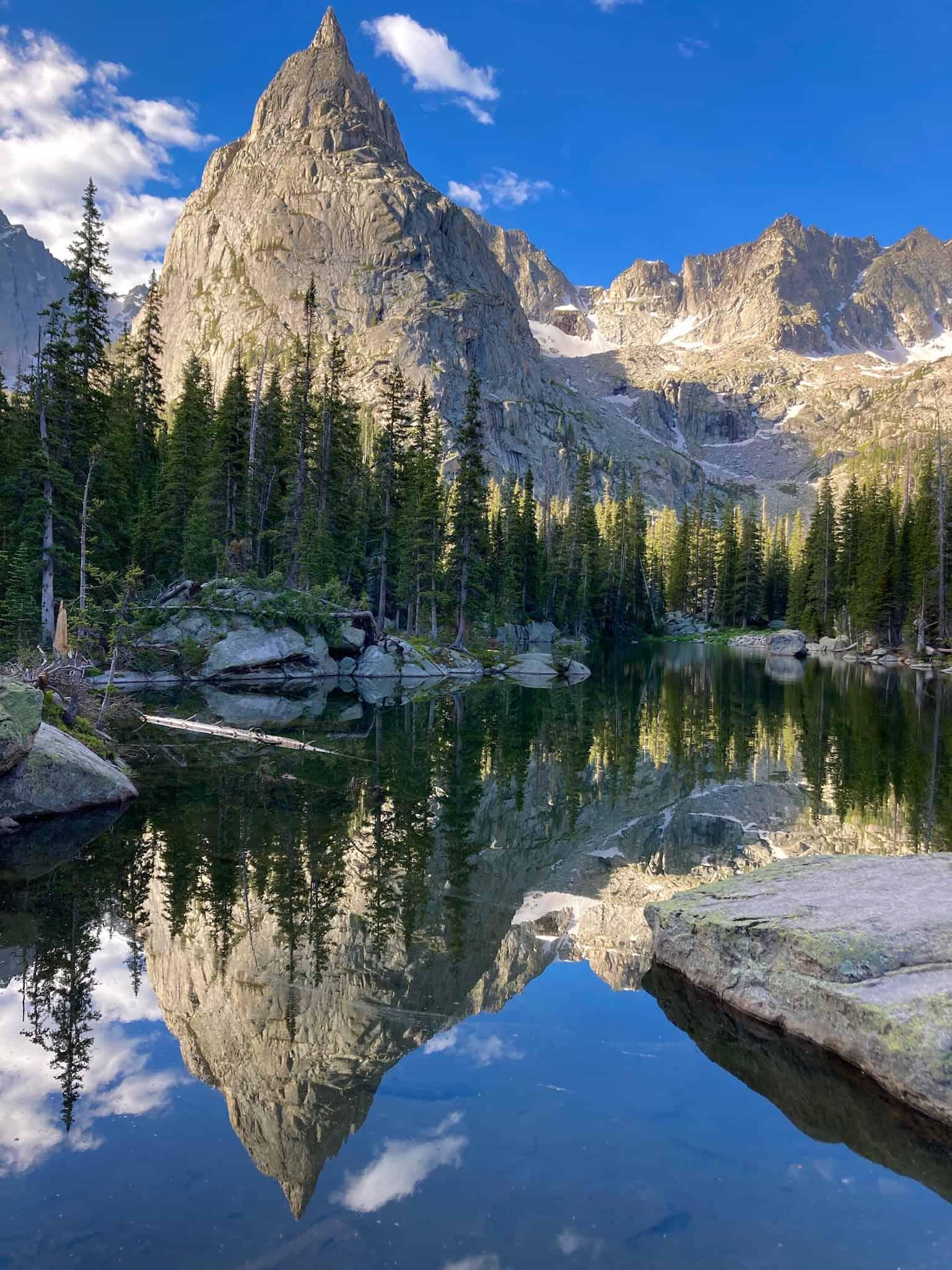 lone eagel over mirror lake